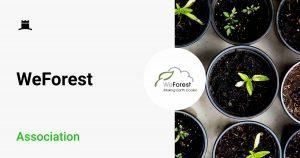 partner association weforest